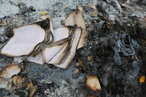 Flawed Investigation-Arson - Maybe Not